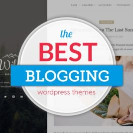 wordPress themes for blogging