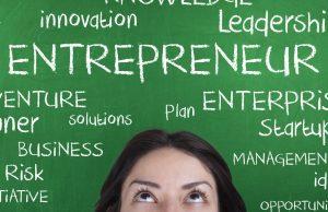 Idea stage startup