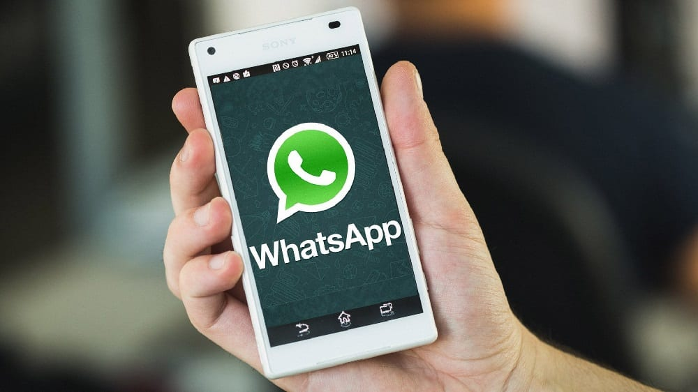 WhatsApp is Launching a Mysterious New App