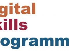 digital skills programme