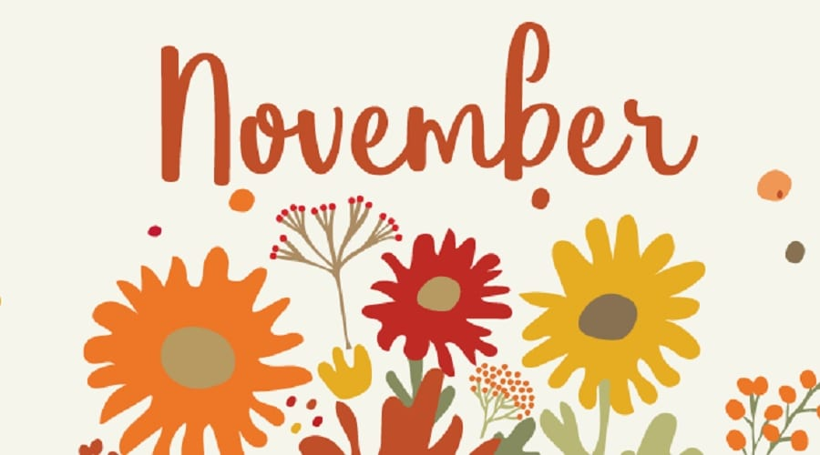 November fun facts
