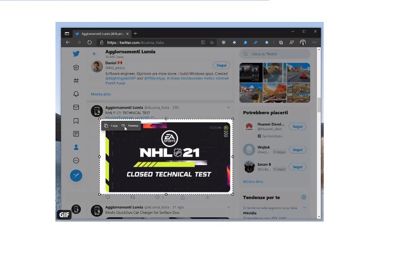 Edge Screenshot function