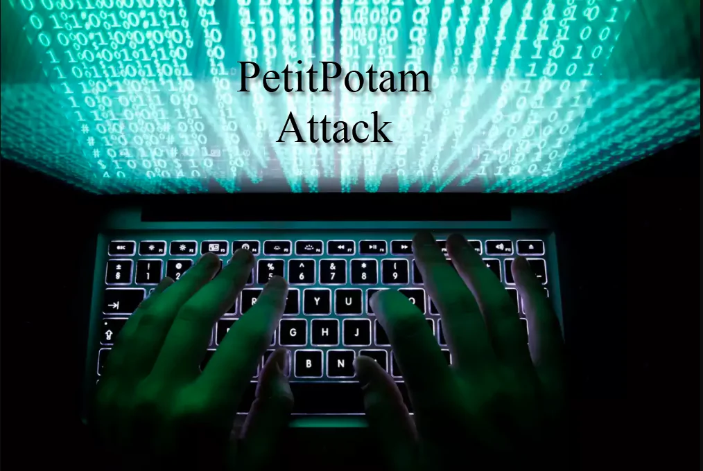 PetitPotam Vulnerability